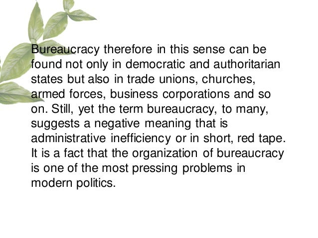 What is a 'Bureaucracy'?