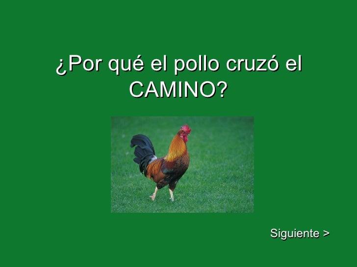 ¿Por qué el pollo cruzó el CAMINO? Siguiente >