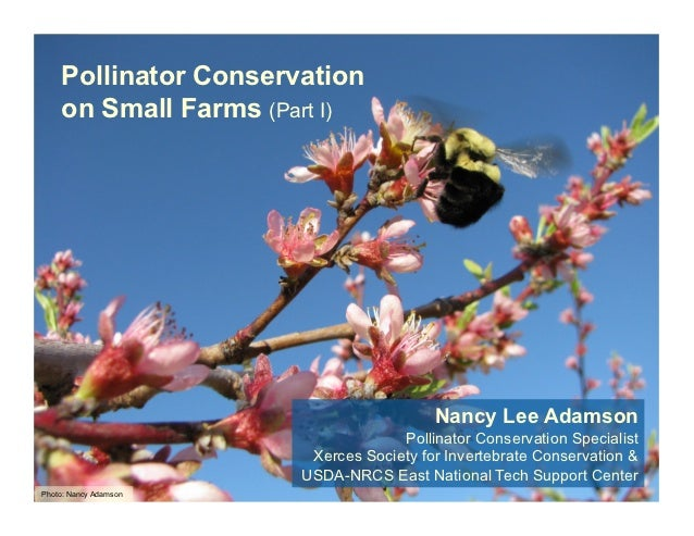 Pollinator Conservation    on Small Farms (Part I)                                         Nancy Lee Adamson              ...
