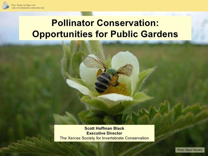 Photo:  Steve Hendrix Pollinator Conservation: Opportunities for Public Gardens Scott Hoffman Black Executive Director The...