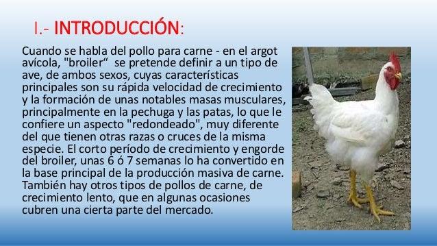 Evaluación de acidificante orgánico en la crianza de pollos.