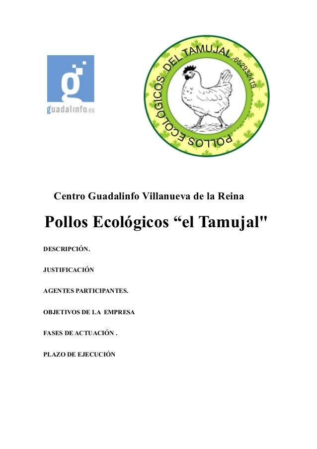 """Centro Guadalinfo Villanueva de la Reina Pollos Ecológicos """"el Tamujal"""" DESCRIPCIÓN. JUSTIFICACIÓN AGENTES PARTICIPANTES. ..."""