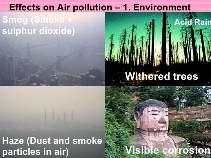effects of air pollution on environment pdf