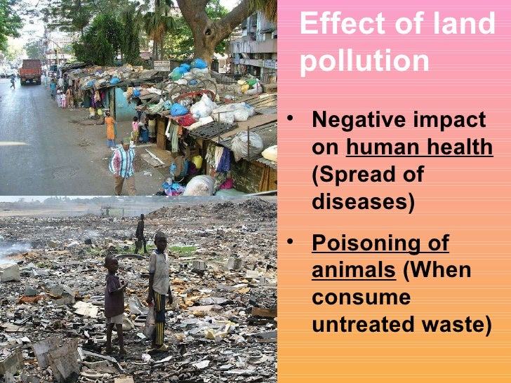 Negative Effects of Pollution
