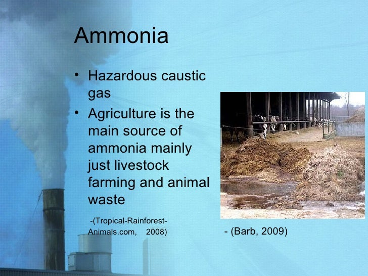 Ammonia <ul><li>Hazardous caustic gas </li></ul><ul><li>Agriculture is the main source of ammonia mainly just livestock fa...