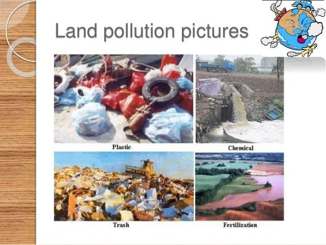 land pollution and how it effects the economy Palm oil, produced from the oil palm, is a basic source of income for many farmers in south east asia, central and west africa, and central americait is locally used as a cooking oil, exported for use in many commercial food and personal care products and is converted into biofuel.