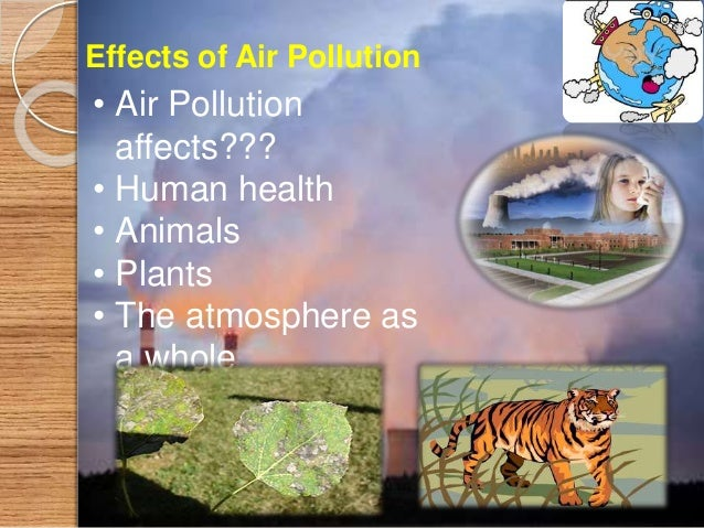Yes, we can avoid pollution As Follows How to Avoid Air Pollution ? • Use natural Gases, like LPG autos • Do not Burst Cra...