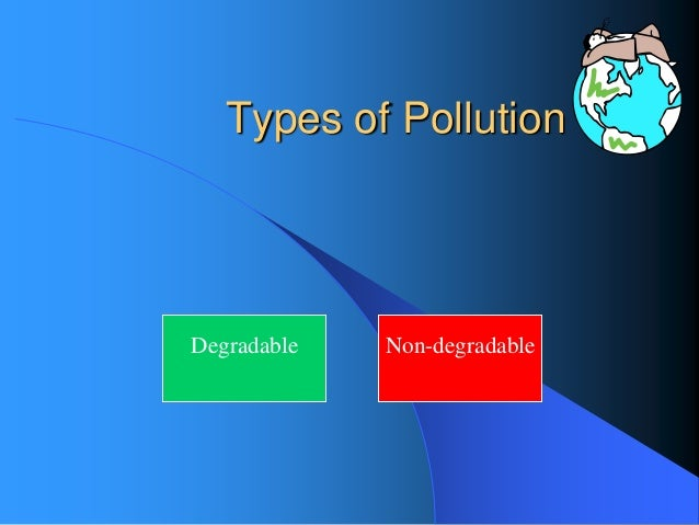 types of pollution and their effects on the environment