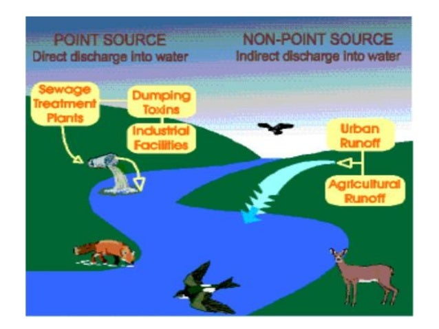 ess topic 5 eutrophication Ib ess exam notes topic 1: systems and models  eutrophication the addition of excess nutrients to a freshwater ecosystem could be a natural process.