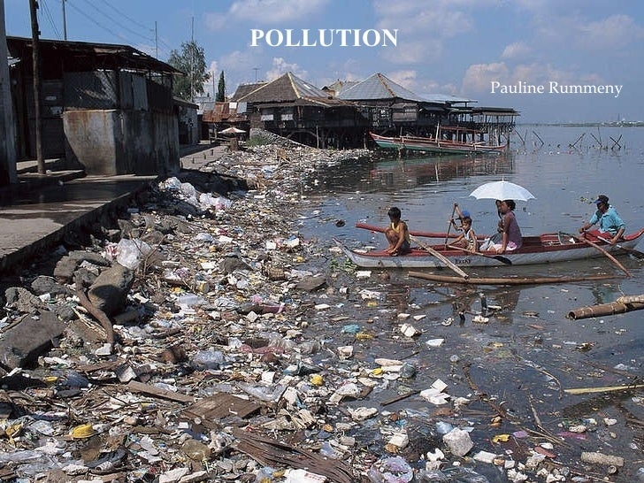 POLLUTION Pauline Rummeny