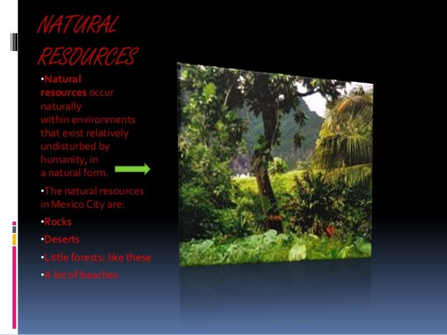 NATURAL RESOURCES •Natural  resources occur naturally within environments that exist relatively undisturbed by humanity, i...