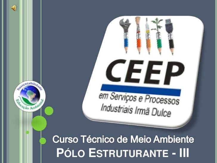 Curso Técnico de Meio Ambiente<br />Pólo Estruturante - III<br />