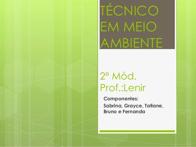 TÉCNICOEM MEIOAMBIENTE2º Mód.Prof.:LenirComponentes:Sabrina, Grayce, Tatiane,Bruno e Fernanda