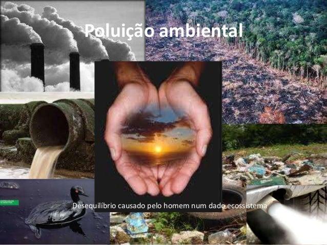 Poluição ambiental  Desequilíbrio causado pelo homem num dado ecossistema