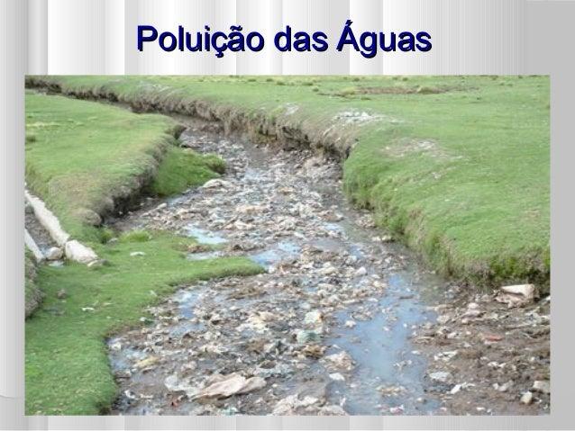 Poluição das ÁguasPoluição das Águas
