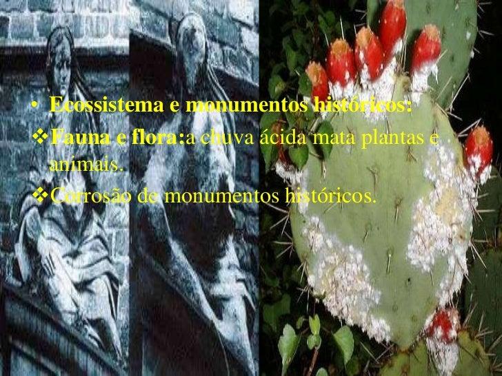 • Ecossistema e monumentos históricos:Fauna e flora:a chuva ácida mata plantas e  animais.Corrosão de monumentos históri...