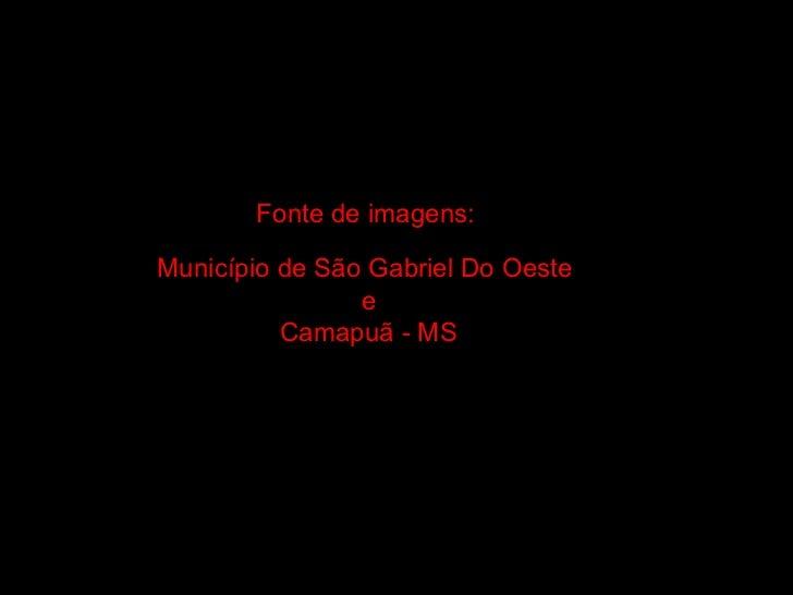 Fonte de imagens:   Município de São Gabriel Do Oeste  e Camapuã - MS