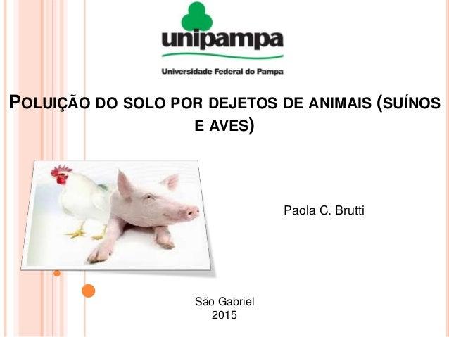 POLUIÇÃO DO SOLO POR DEJETOS DE ANIMAIS (SUÍNOS E AVES) Paola C. Brutti São Gabriel 2015