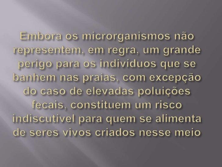 Embora os microrganismos não representem, em regra, um grande perigo para os indivíduos que se banhem nas praias, com exce...