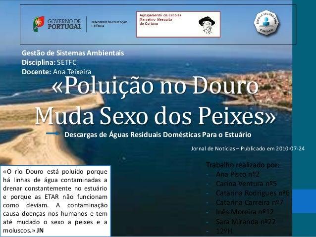 Gestão de Sistemas Ambientais     Disciplina: SETFC     Docente: Ana Teixeira          «Poluição no Douro         Muda Sex...