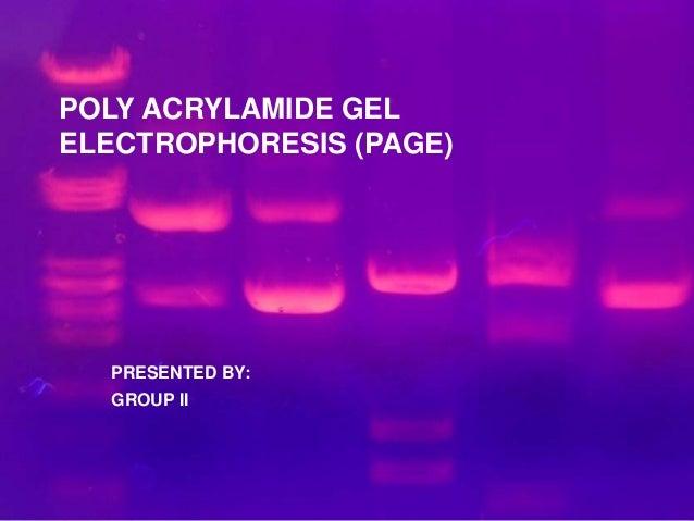 POLY ACRYLAMIDE GEL ELECTROPHORESIS (PAGE) PRESENTED BY: GROUP II