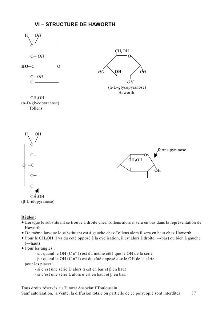 L Fructopyranose Poly biochimie 10 11