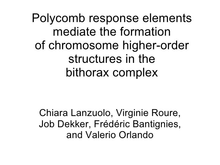 Polycomb response elements mediate the formation of chromosome higher-order structures in the bithorax complex Chiara Lanz...