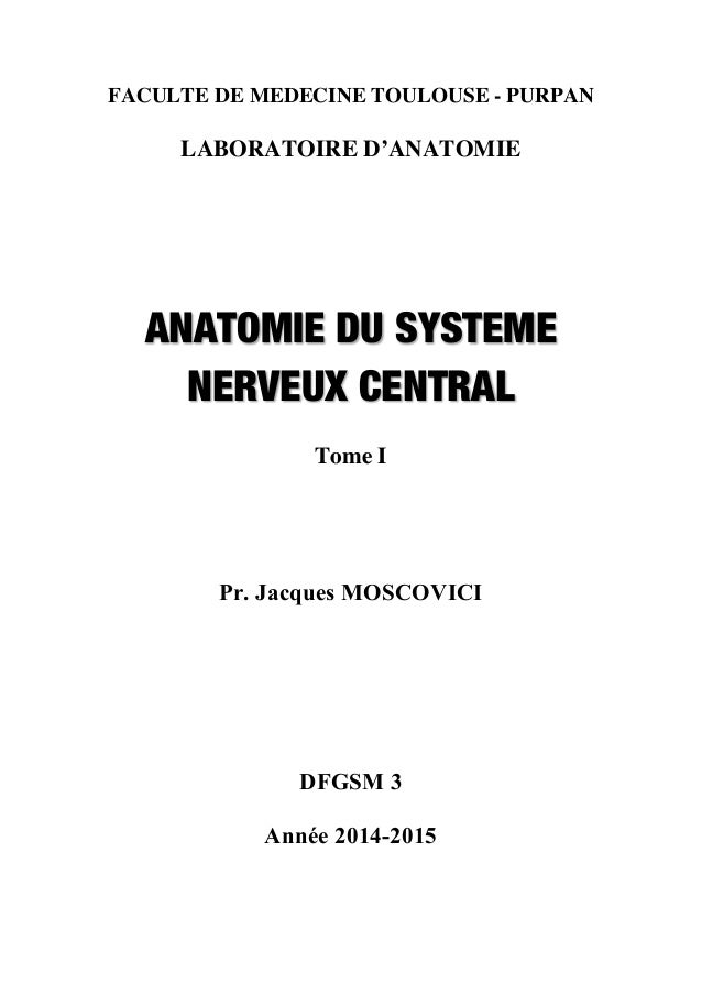 FACULTE DE MEDECINE TOULOUSE - PURPAN LABORATOIRE D'ANATOMIE ANATOMIE DU SYSTEME NERVEUX CENTRAL Tome I Pr. Jacques MOSCOV...