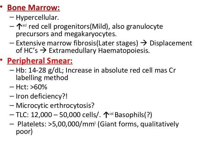 • Bone Marrow:  – Hypercellular.  – ↑sed red cell progenitors(Mild), also granulocyte    precursors and megakaryocytes.  –...