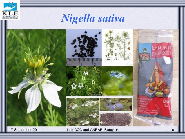 standardization of polyherbal formulations for drug analysis Ajay k meena etal / standardization of ayurvedic polyherbal formulation, pancasama churna ijppr march- may 2010, vol2, issue1, 11-14 14 help in identifying the drug in dried condition.