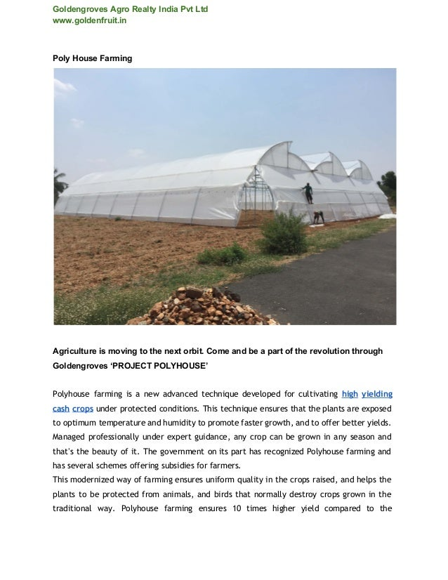 GoldengrovesAgroRealtyIndiaPvtLtd www.goldenfruit.in PolyHouseFarming   Agricultureismovingtothenextorbit...