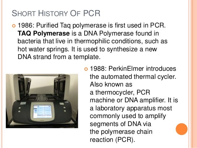 a polymerase chain reaction biology essay Polymerase chain reaction polymerase chain reaction (pcr) is an amplification technique for cloning the specific or targeted parts of a dna sequence to generate thousands to millions of copies of dna of interest.