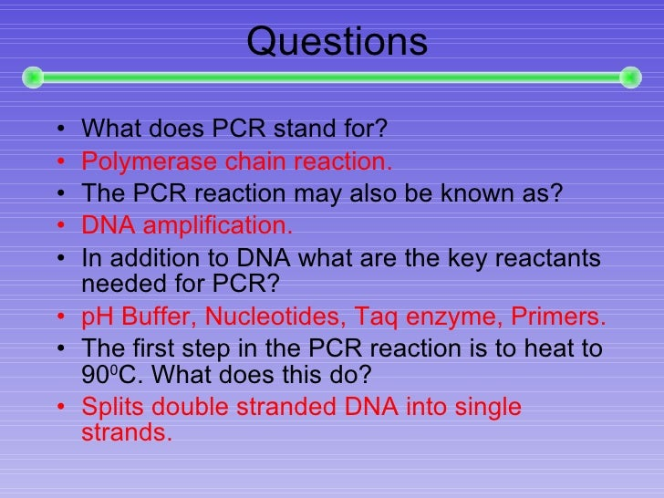 Image Result For Are Pcr Primers Double Stranded