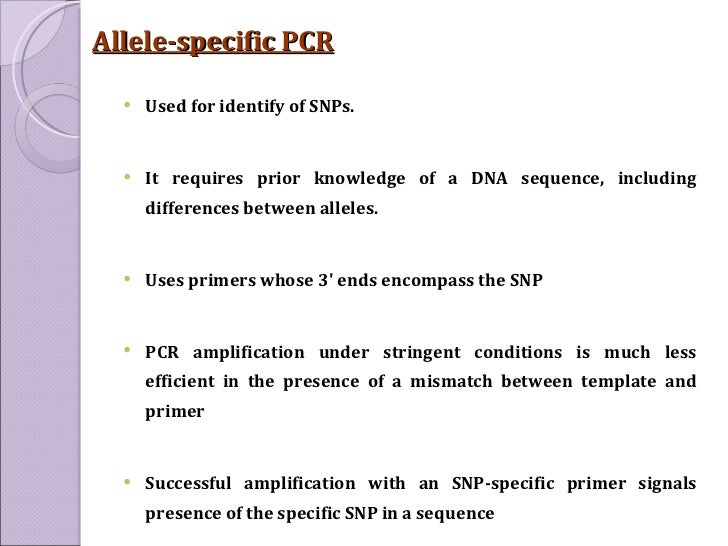 how much template dna for pcr - polymerase chain reaction