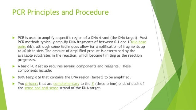 principles of dna preparation and polymerase chain reaction The polymerase chain reaction (pcr) is a scientific technique in molecular  biology to amplify a single or a few copies of a piece of dna across several  orders of  was limited by primer synthesis and polymerase purification issues 2  pcr.