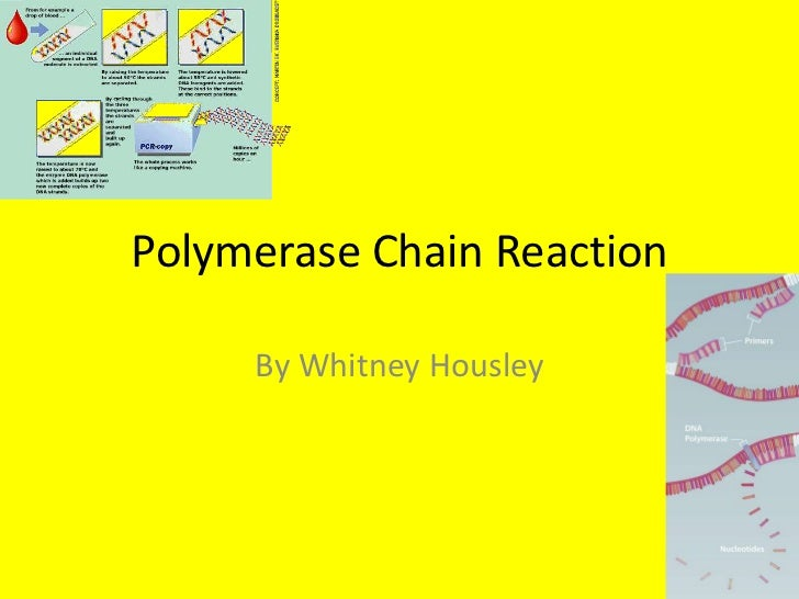 Polymerase Chain Reaction     By Whitney Housley
