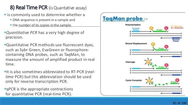 Polymerase chain reaction Pranav