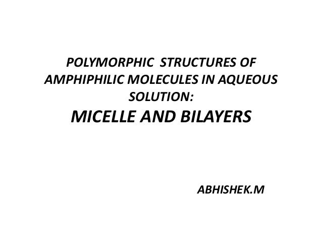 Polymorphic structures of amphiphilic molecules in aqueous