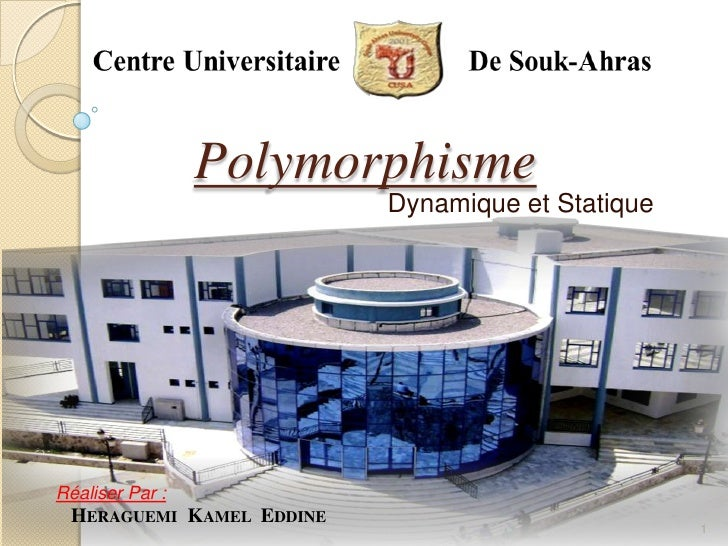 Polymorphisme                          Dynamique et StatiqueRéaliser Par : HERAGUEMI KAMEL EDDINE                         ...