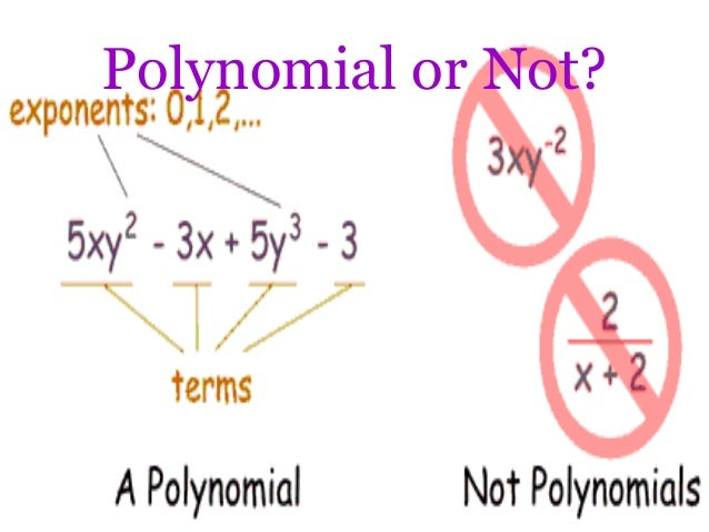 polynomial