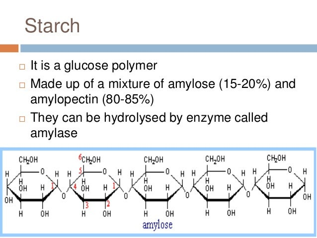 What Is The Monomer Building Block Of Starch