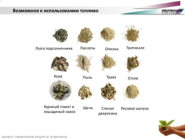 Copyright © – Polytechnik Biomass Energy Pty Ltd - All rights reserved Возможное к использованию топливо Лузга подсолнечни...