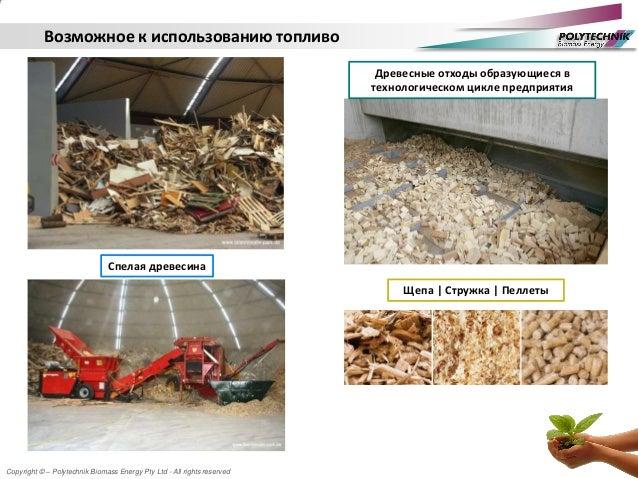 Copyright © – Polytechnik Biomass Energy Pty Ltd - All rights reserved Возможное к использованию топливо Спелая древесина ...