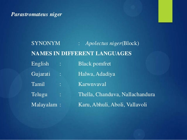 fishes names in malayalam - photo #34
