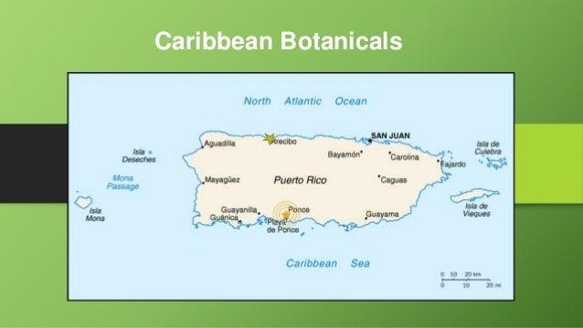 Caribbean Botanicals