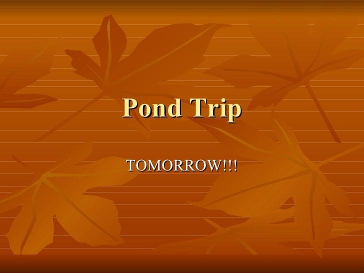 Pond Trip TOMORROW!!!