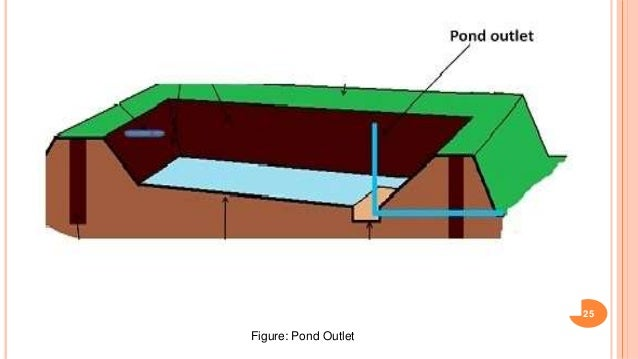 Construction Of Fish Pond