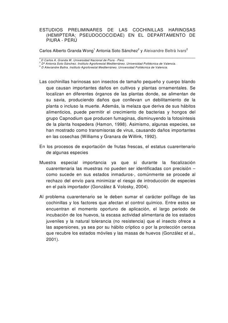 ESTUDIOS PRELIMINARES DE LAS COCHINILLAS HARINOSAS  (HEMIPTERA: PSEUDOCOCCIDAE) EN EL DEPARTAMENTO DE  PIURA - PERÚCarlos ...
