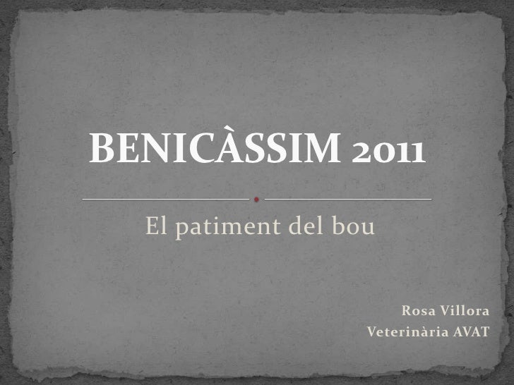 BENICÀSSIM 2011  El patiment del bou                        Rosa Villora                    Veterinària AVAT