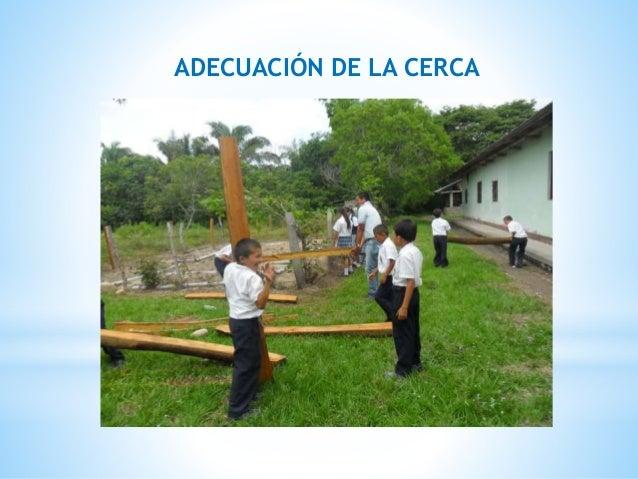 ADECUACIÓN DE LA CERCA